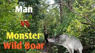 Video Berburu babi nangoe monster 100kg up MP3, 3GP, MP4, WEBM, AVI, FLV Desember 2018