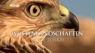 türkiyede çekilmiş vahşi yaşam belgeseli