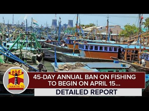 45-day-Annual-Ban-on-Fishing-to-begin-on-April-15--Thanthi-TV