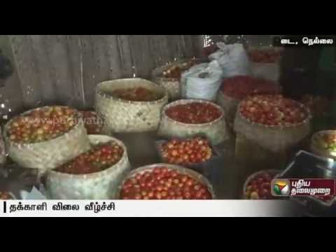 Farmers-in-Tirunelvei-in-trouble-as-the-rate-for-tomatoes-plummets