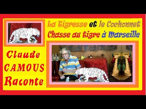 La Tigresse et le Cochonnet « Claude Camous Raconte » une chasse au tigre à Marseille en 1909