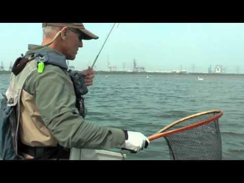 Oostvoornsemeer - In deze film neemt Fred Vet - lid van de vliegvisvereniging De Poldervlieg - je mee naar het Oostvoornsemeer. Al jaren gaat hij elke maand van het jaar naar ...