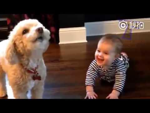 DOG AND BABY - Thời lượng: 4 phút, 12 giây.