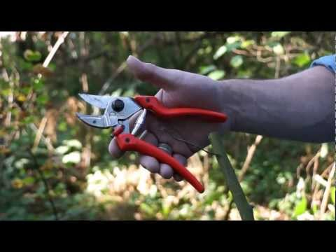 Original LÖWE Anvil Pruners — 7107 — Big Bear Tools