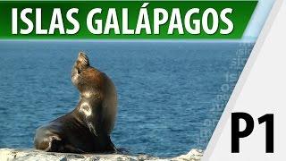 Galapagos Ecuador  city images : Islas Galápagos / Lugares Turísticos / Parte 1
