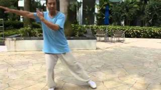 TaiChi42-6 四十二式太极拳-6 YouTube video