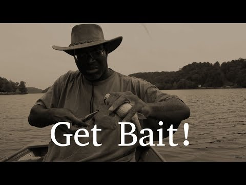 How to Catch Blue Catfish in a River
