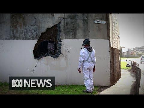 Warrnambool's wombat street art is a happy accident