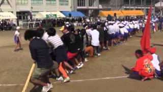 羽黒小学校運動会7午後2・競走1年と綱引き