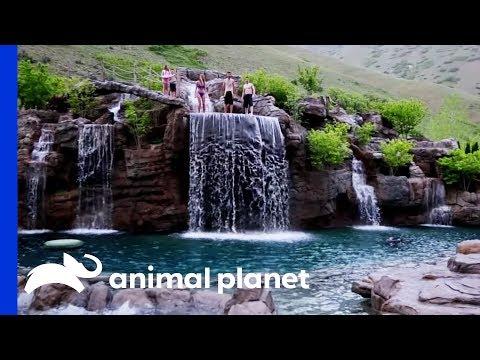la piscina più lussuosa del mondo: vale 2 milioni di dollari!