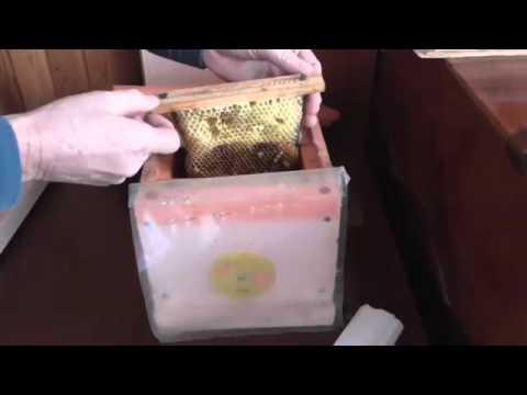 Пчеловодство. Смотреть онлайн: Микро нуклеус своими руками