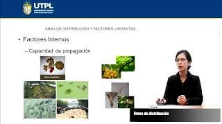 UTPL ÁREAS DE DISTRIBUCIÓN [(GESTIÓN AMBIENTAL)(ECOSISTEMAS DEL ECUADOR)]