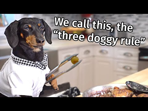 Ep 7: Crusoe the French Chef - Funny Talking Dog Video