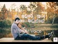 Gan Iwure Thuru Latha Madulle Karaoke(Without Voice)