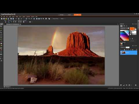 How to use the selection tools in PaintShop Pro
