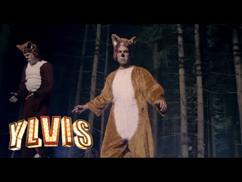Tekst piosenki Ylvis - The Fox po polsku