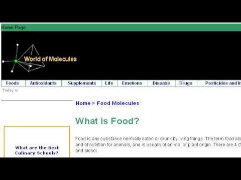 What Types Of Food Contain Lipids?