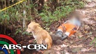 Umani ng paghanga mula sa mga pulis ang isang aso dahil sa pagiging tapat nito sa kanyang amo sa Kitcharao, Agusan del Norte. Subscribe to the ABS-CBN ...
