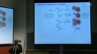 28. Mechanism And Equilibrium Of Carbonyl Reactions