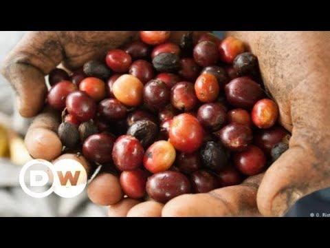 Bildung und Bohnen in Nicaragua | DW Deutsch