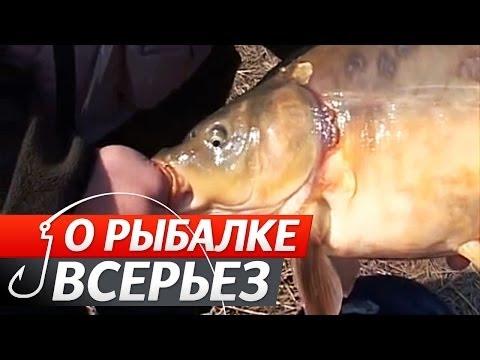 о рыбалке всерьез видео