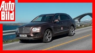 Video: Bentley Bentayga - Tour Etappe 4 - Tagebuch - Test / Sweden to Norway by Auto Bild