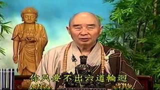Kinh Vô Luợng Thọ (1998) tập 105&106 - Pháp sư Tịnh Không