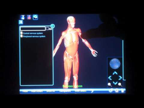 Video of Anatomy 3D