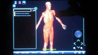 Anatomy 3D YouTube video