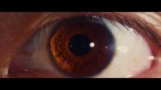 Nonton I Origins 2014   Occhi Film Subtitle Indonesia Streaming Movie Download