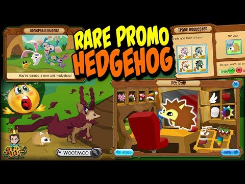 Video Crazy Rare Pet Hedgehog Offers & Trading WootMoo on Animal Jam download in MP3, 3GP, MP4, WEBM, AVI, FLV January 2017