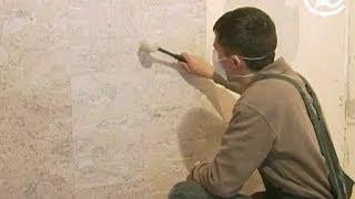 Отделка стен пробкой