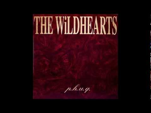 The Wildhearts - Nita Nitro lyrics