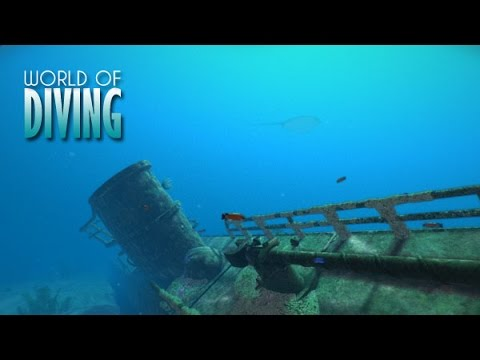 World of Diving — U 352 shipwreck showcase
