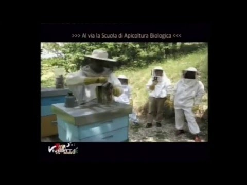 Scuola apistica biologica della Riserva Naturale dei Laghi Lungo e Ripasottile