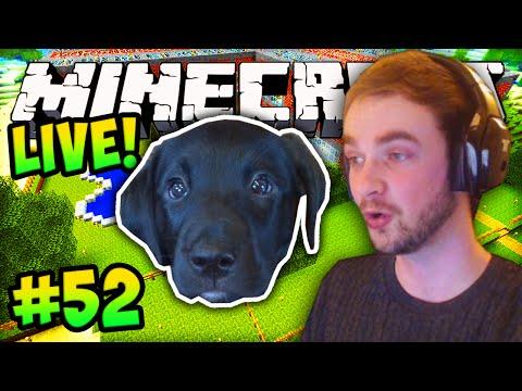 "MINECRAFT (How To Minecraft) – w/ Ali-A #52 – ""PUPPY HOME!"""