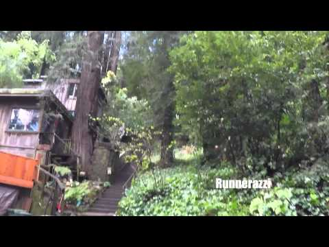 Running Up Dipsea Trail Stairs from Mill Valley, California
