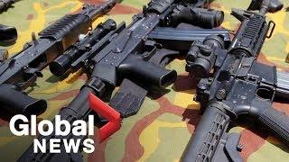 What are New Zealand's gun laws?