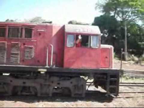 Trem ALL em Cambará-Paraná