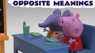 Opposite Meanings