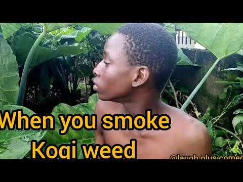 When you smoke kogi weed(real house of comedy)laugh plus comedy)Nigeria comedy)xploit comedy)prank