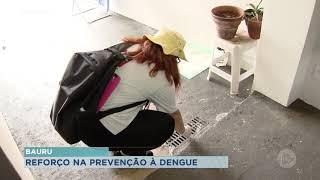 Bauru intensifica ações preventivas contra a dengue