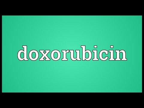 Doxorubicin Meaning
