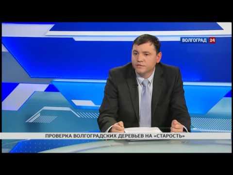 Сергей Иванников, заместитель директора центра защиты леса Волгоградской области