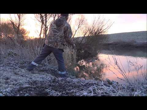 Hardcore Chub fishing. March 2016 (видео)