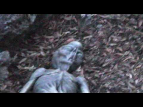 corpo alieno ritrovato in una zona montuosa