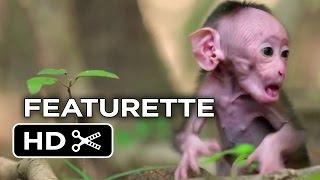 Nonton Monkey Kingdom Featurette   Welcome  2015    Disneynature Documentary Hd Film Subtitle Indonesia Streaming Movie Download