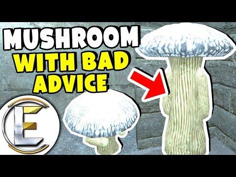 Mushroom That Gives Out Bad Advice - Gmod DarkRP Life (Don't Trust A Talking Mushroom) (видео)