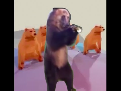 Video Bears Dance to Mask Off download in MP3, 3GP, MP4, WEBM, AVI, FLV January 2017