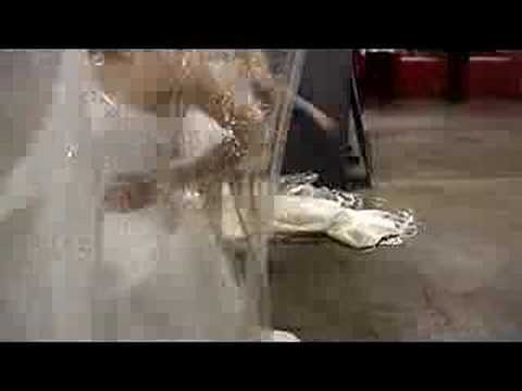 Running of the Brides 2008 (видео)